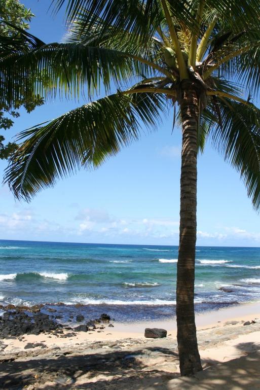 hawaii-1613011_1920