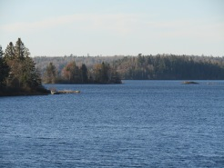 Beautiful Lake of the Woods, not far from where I live, though I can't see it from my apartment.