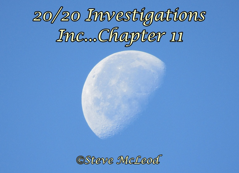 20/20 Investigations, Inc…Chapter 11.